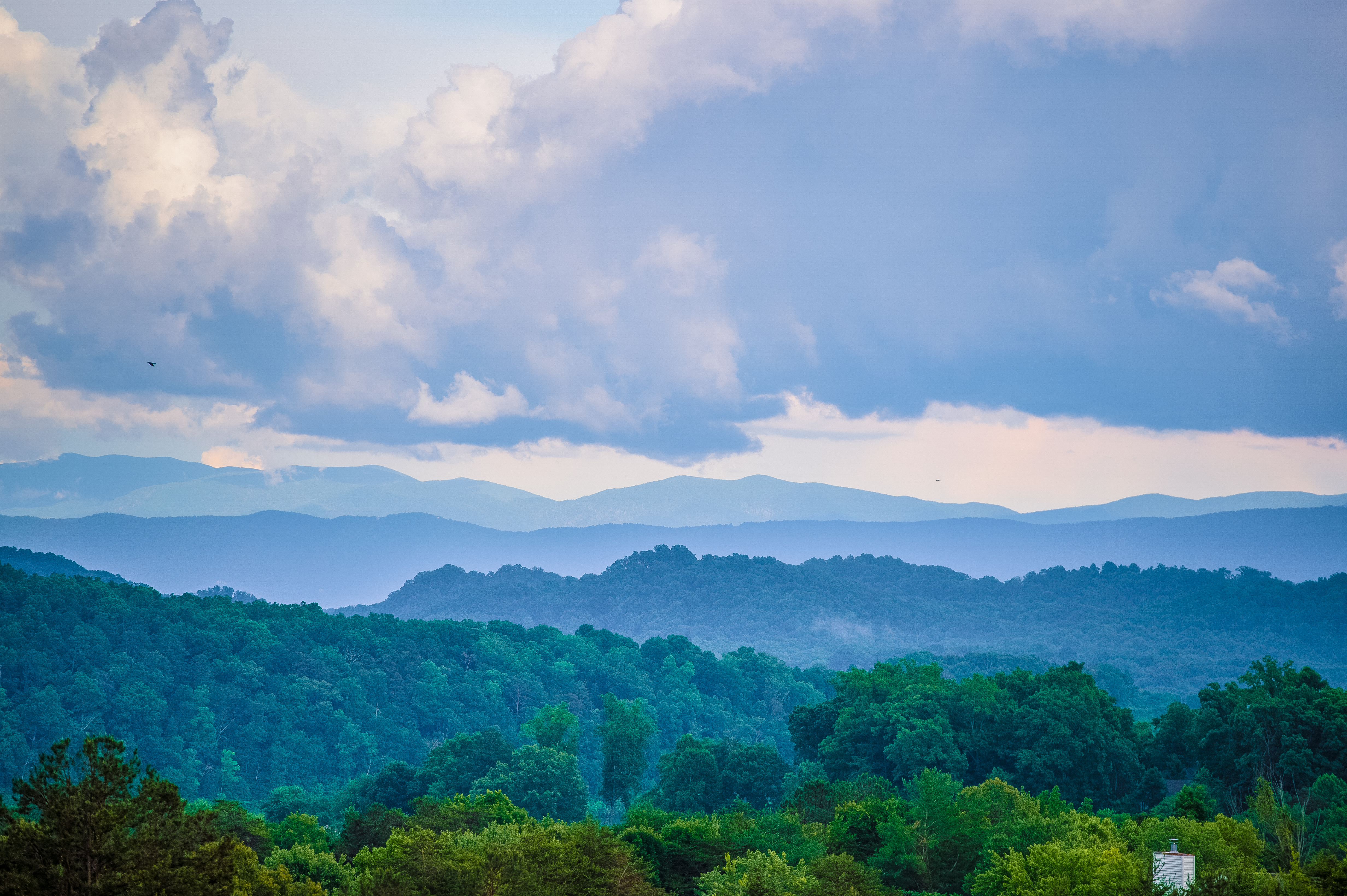 31. The Great Smoky Mountains National Park is in your backyard